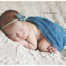 Andover MA Newborn Photographer