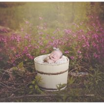 Stoneham MA Newborn Photographer