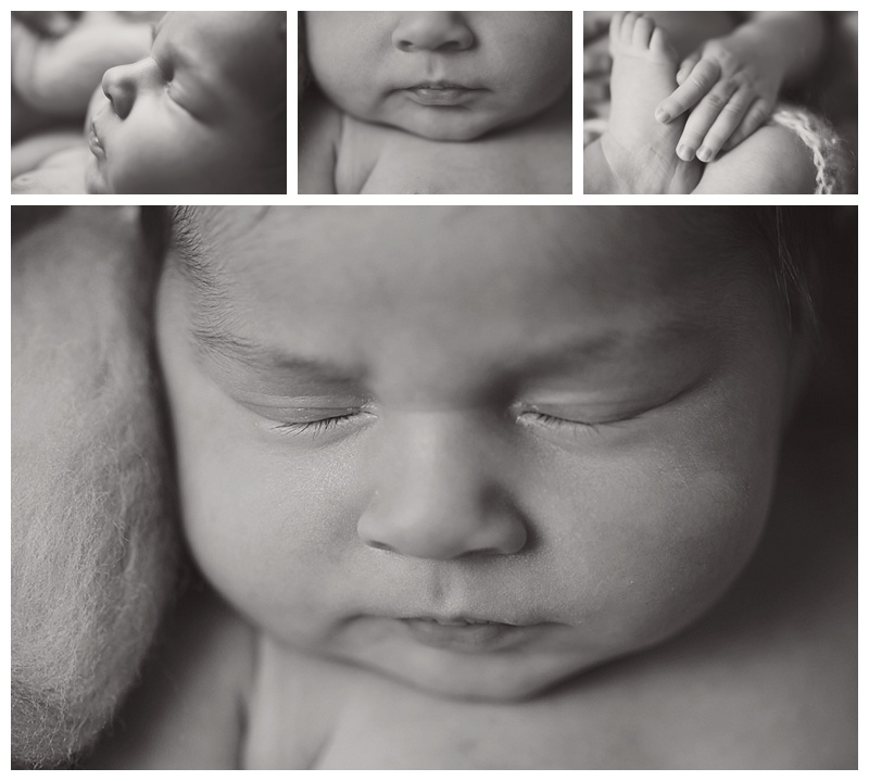 Bridgewater MA Newborn Photographer